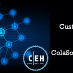 ColaSoft Packet Builder in CEH Training